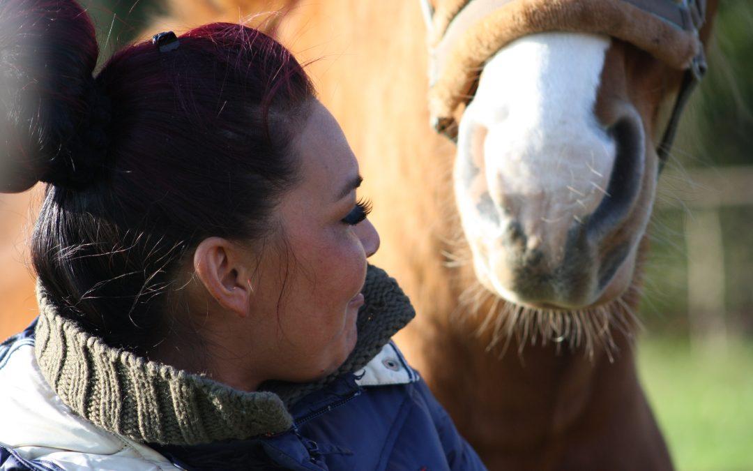 Communicatie, het paard als spiegel